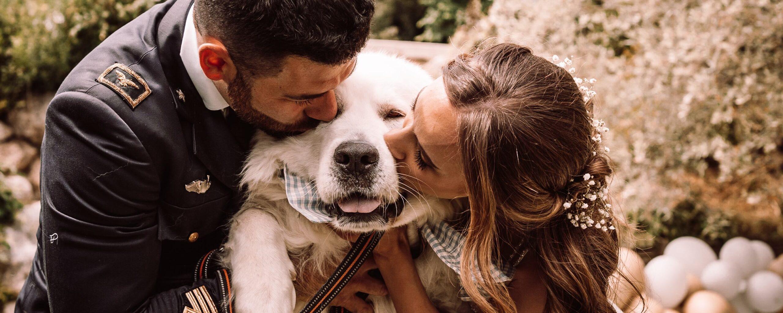 Cani al matrimonio